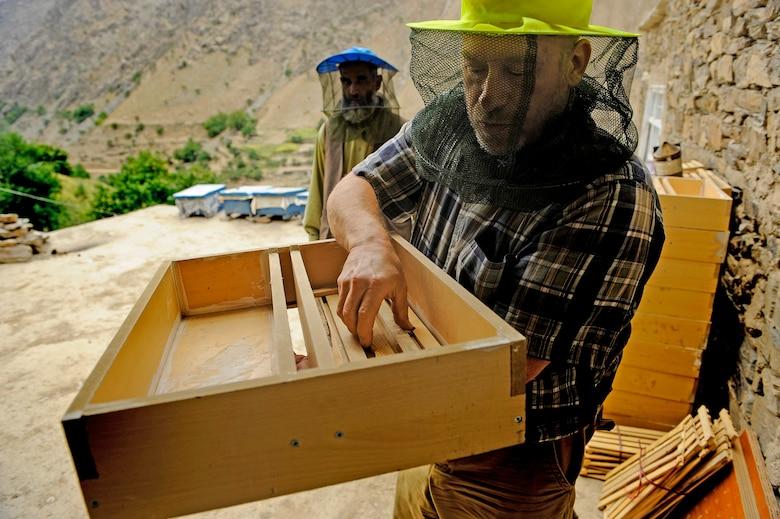 Image result for Economic Crash no bees