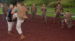 Sgt. Robert J. Porras, Marine Corps Martial Arts instructor, demonstrates a push kick on Sgt. Joseph M Benezette, MCMAP instructor trainer, during green belt training April 11 at Bordelon Field, Camp H. M. Smith, Hawaii. Porras and Benezette have taken the challenging of training 80 percent of Headquarters and Service Battalion, U.S. Marine Corps Forces, Pacific, to green belt before August.
