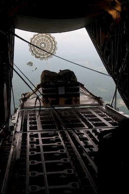 "The 815th Airlift Squadron, ""The Flying Jennies"" drop a cargo pallet while conducting a training mission Aug. 19 over Camp Shelby, Hattiesburg, Miss. During the mission, combat maneuvering of the C-130J-30 ""Super Hercules"" was executed, in addition to dropping two training pallets.  (U. S. Air Force photo/Master Sgt. Daniel Nathaniel)"
