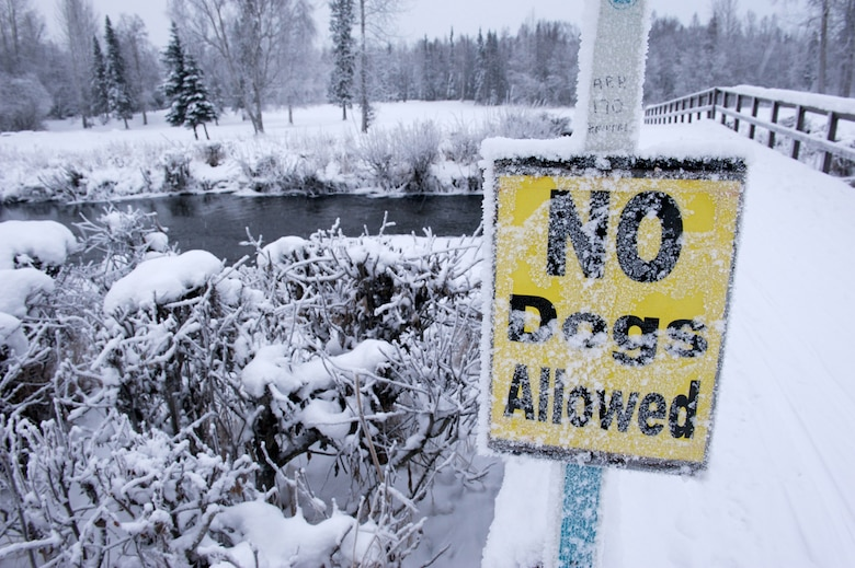 A sign at the Eagleglen Golf Course cross-country ski trail ensures no four-legged animals posthole the groomed trails. The course is host to several beautiful landscape views. (Photos by David Bedard/JBER PAO)