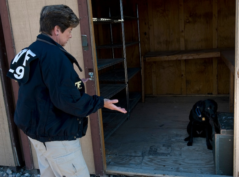 NELLIS AIR FORCE BASE, Nev.-- Lauren Marakas, senior special agent canine handler from the Bureau of Alcohol, Tobacco, Firearms, and Explosives, questions Ruthie, an explosives detection canine, to find where explosives are hidden during a joint explosive detection training exercise Dec. 16. Military working dog handlers from the 99th Security Forces Squadron worked with 25 canine teams from the Las Vegas area.(U.S. Air Force photo by Senior Airman Brett Clashman)