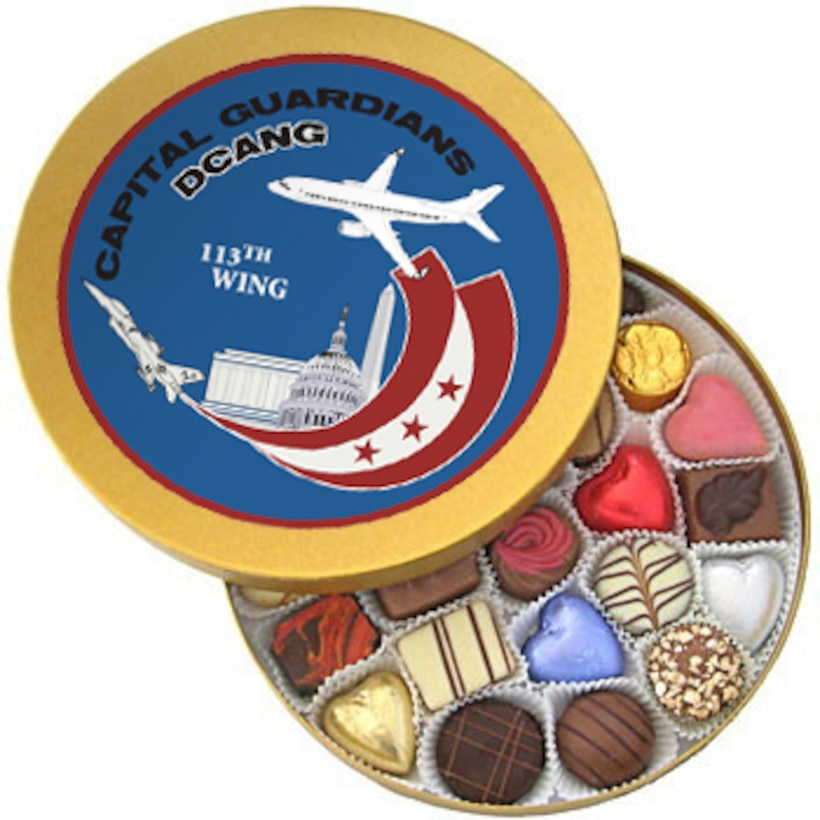 113th Wing DC Air National Guard Seal
