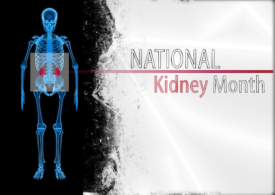 March is National Kidney Month and the professionals from the 55th Medical Group encourage everyone to take care of their kidneys. The kidneys perform numerous functions within the body including balancing bodily fluids, removing waste products  and controling blood pressure. U.S. Air Force graphic by Josh Plueger