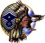 USAF Command Chief Artwork