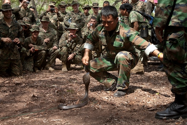 Military Pay Chart 2010: 1. LF CARAT-2010 Marines train with Royal Thai Marine Corps ,Chart