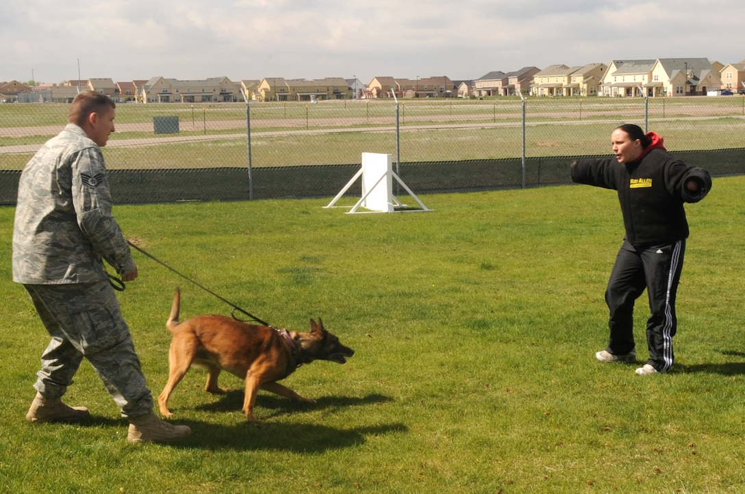 BUCKLEY AIR FORCE BASE, Colo. -- Staff Sgt. Charles Dalton, 460th Security Forces Squadron, and Buck, 460th SFS military working dog, demonstrate takedown procedures on Staff Sgt. Nicole Gladkowski, 460th SFS, May 13. Buck is one of six MWDs at Buckley. (U.S. Air Force photo by Airman 1st Class Manisha Vasquez)