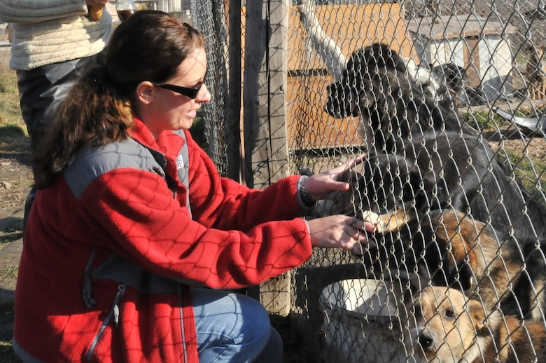 TURDA, Romania – Staff Sgt. Rachel Lubovich, 48th Logistics Readiness Squadron material readiness supervisor, greets dogs at an animal shelter Nov. 6. Sergeant Lubovich organized a project to help the shelter obtain supplies to expand the shelter and help get more dogs off the streets and into new homes. (U.S. Air Force photo/Senior Airman David Dobrydney)