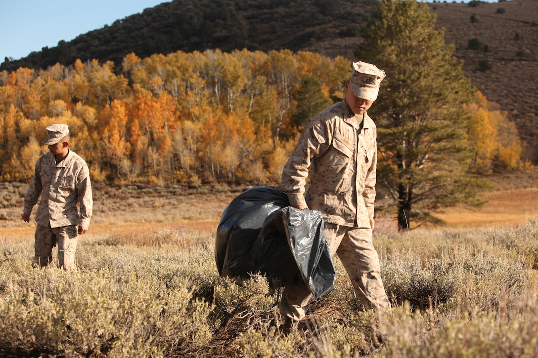 Marines aboard the Mountain Warfare Training Center search for trash during operation Mountain Sweep Oct. 18 in the Toiyabe National Forest. The biannual clean-up effort helps maintain the preservation of the national forest and the wildlife that inhabit it.::r::::n::