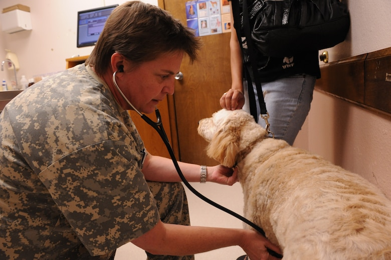 DYESS AIR FORCE BASE, Texas—Dr. Denise Ruark, Dyess Veterinarian, listens to Da Vinci's heart Oct. 20 during a routine appointment at the Dyess Veterinary Clinic here. The Clinic provides pet services such as: immunizations, treatments for skin disorders and eye and ear infections, micro-chipping, health certificates, and spay and neuter services. Heartworm prevention medication, flea and tick medication, vitamins, dental kits and shampoos are available for purchase at the resale counter. Base housing residents are required to register their pets with the clinic. Hours of operation are Monday-Thursday from 9 a.m-4 p.m, and Fridays from 9 a.m-2 p.m. For more information, call the clinic at (325) 696-3367. (U.S Air Force photo/ Airman 1st Class Shannon Hall)
