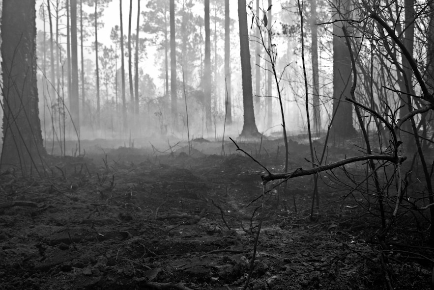 Smoke rises from the floor of the burnt forest floor on Eglin Air Force Base's range Sept. 21.  The blaze, which occurred along part of the reservation South of Hwy 20 and West of Bayou Basin burned approximately 90 acres.  The still smoldering fire was determined to be human-caused and is under investigation.  (U.S. Air Force photo/Samuel King Jr.)