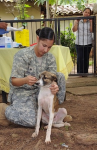 AGUA SALADA, Honduras --  Petting a dog to calm it down, Staff Sgt. Michelle Benford, of the Joint Task Force-Bravo Medical Element, prepares the animal to receive a shot during a medical readiness training exercise here Sept. 28. Veterinary service providers, including Sergeant Benford, provided 12 animals with rabies vaccinations during the exercise here. (U.S. Air Force photo/Tech. Sgt. Benjamin Rojek)
