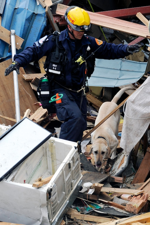 A firefighter with CA-TF2 and his live-human scent working dog search debris for tsunami victims during a search and recovery mission in Ofunato, Japan on March 15, 2011.  The Los Angeles County Fire Urban Search and Rescue Team, Task Force 2, travelled with the 452nd Air Mobility Wing, March Air Reserve Base, Calif., to the earthquake and tsunami stricken areas of Japan just four days after the devastation.  (U.S. Air Force photo/Technical Sgt. Daniel St. Pierre)