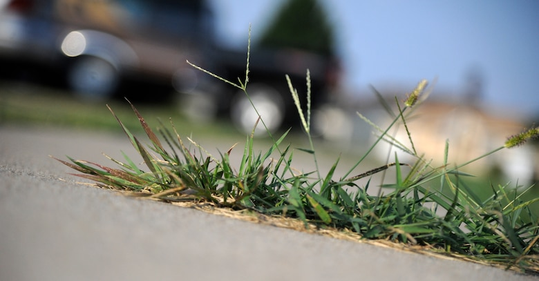 WHITEMAN AIR FORCE BASE, Mo. - Grass grows out of a sidewalk in base housing here July 28, 2011. The housing office here said removing grass from cracks, driveways, curbs and doorsteps will help preserve the concrete as well as make the community safer and more appealing. (U.S. Air Force photo by Airman 1st Class Cody H. Ramirez)