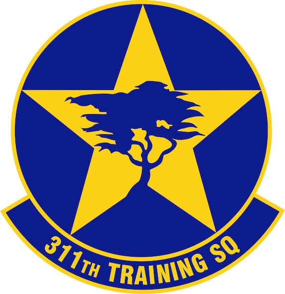 311th Training Squadron (U.S. Air Force graphic)