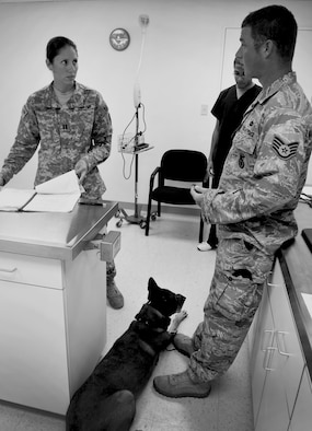 """ANDERSEN AIR FORCE BASE, Guam—U.S. Army Capt. Angelina Gerardo, Public Health Command District Western Pacific veterinarian, goes over a military working dog's health chart with U.S. Air Force Staff Sgt. David McClain, 36th Security Forces Military Working Dog trainer, during a revisit here Aug. 17. The 36th Wing veterinarian's clinic takes care of approximately 30 """"working dogs"""" to include military working dogs and United States Department of Agriculture dogs. (U.S. Air Force photo by Senior Airman Benjamin Wiseman/Released)"""