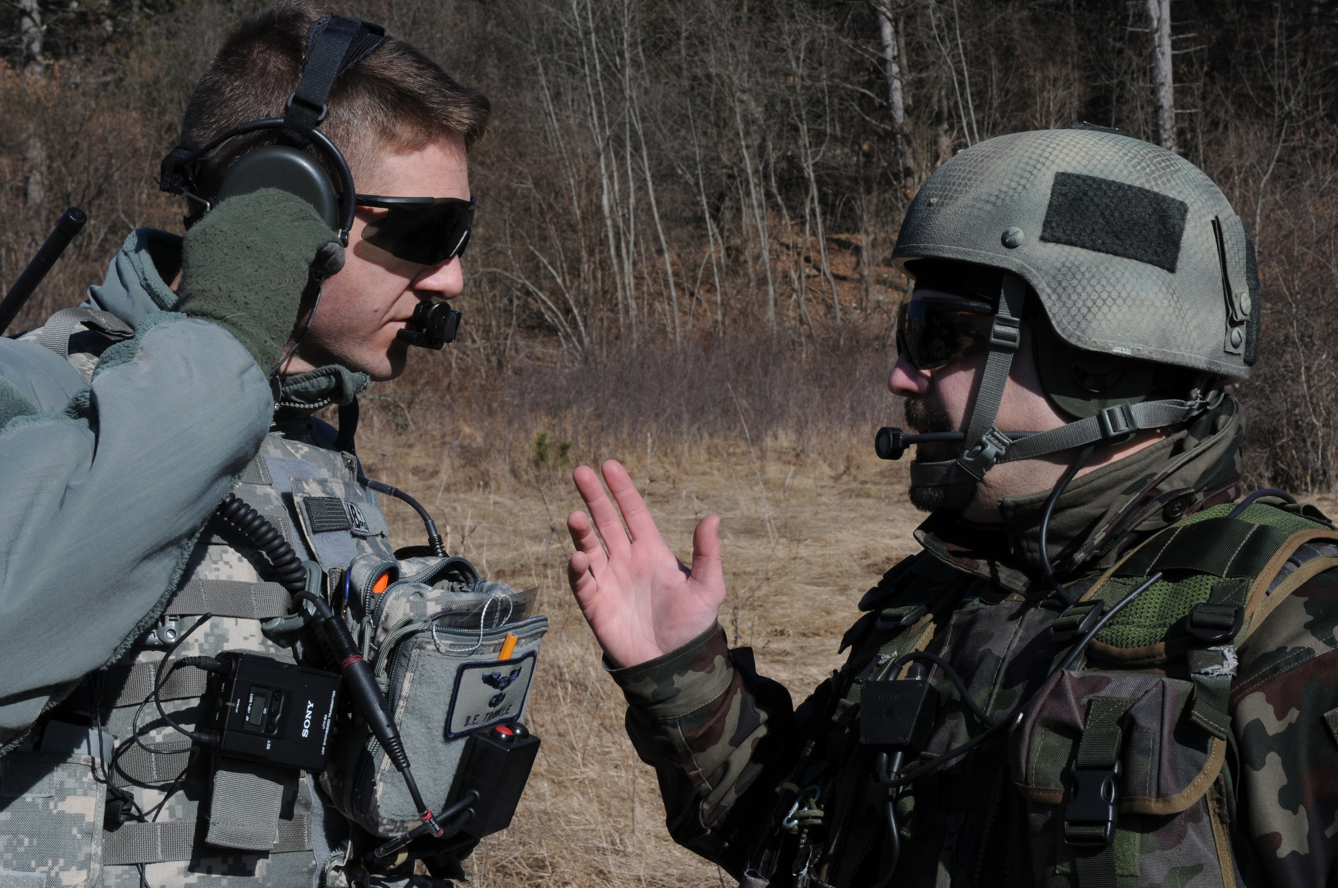 8th ASOS conducts coalition training with Slovenian TACPs > Aviano