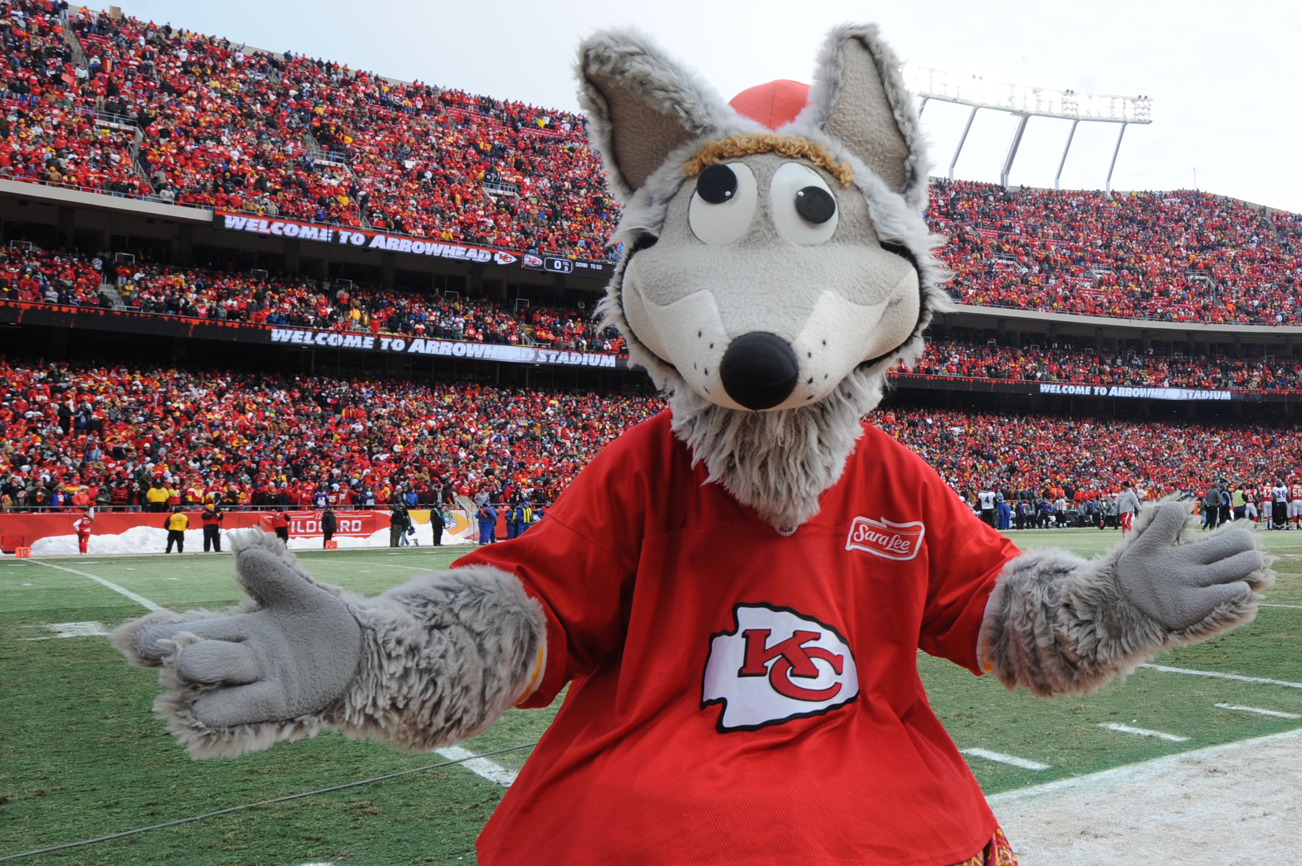 What is the baltimore ravens mascot name - Kansas City Mo Kc Wolf The Official Mascot Of The Kansas City