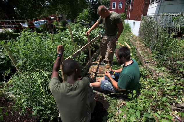 Marines with Company I, 3rd Battalion, 24th Marine Regiment, clear overgrowth from a fence at a community garden in St. Louis, June 20. Throughout Marine Week, Marines will participate in outreach events aimed at improving local communities.