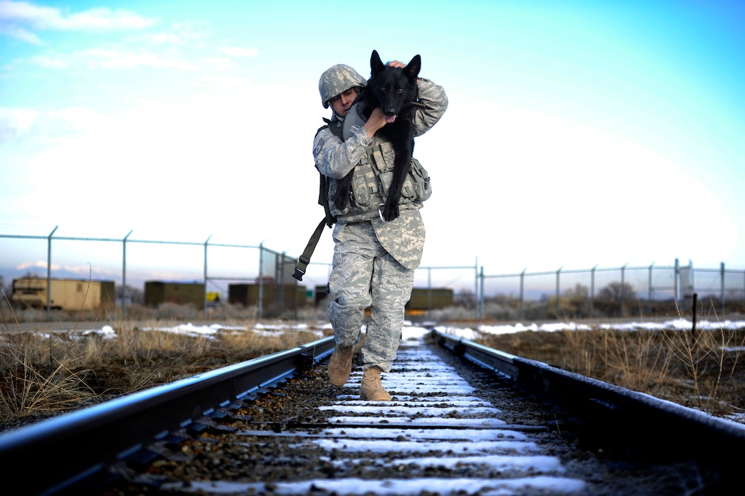 Staff Sgt. Erick Martinez, a military dog handler, uses an over-the-shoulder carry with Argo II March 4, 2011, during an exercise at Hill Air Force Base, Utah. The exercise helps build trust, loyalty and teamwork for Sergeant Martinez and Argo II, who have been working together for only two months. (U.S. Air Force photo/Airman 1st Class Allen Stokes)