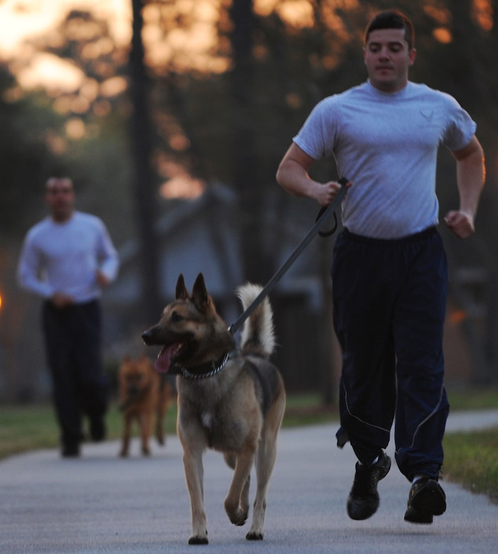 Senior Airman Joel Patterson and  Elmo take a jog around McCombs way during physical training March 14 on Joint Base Charleston Air Base.  (U.S. Air Force photo/ Staff Sgt. Nicole Mickle)