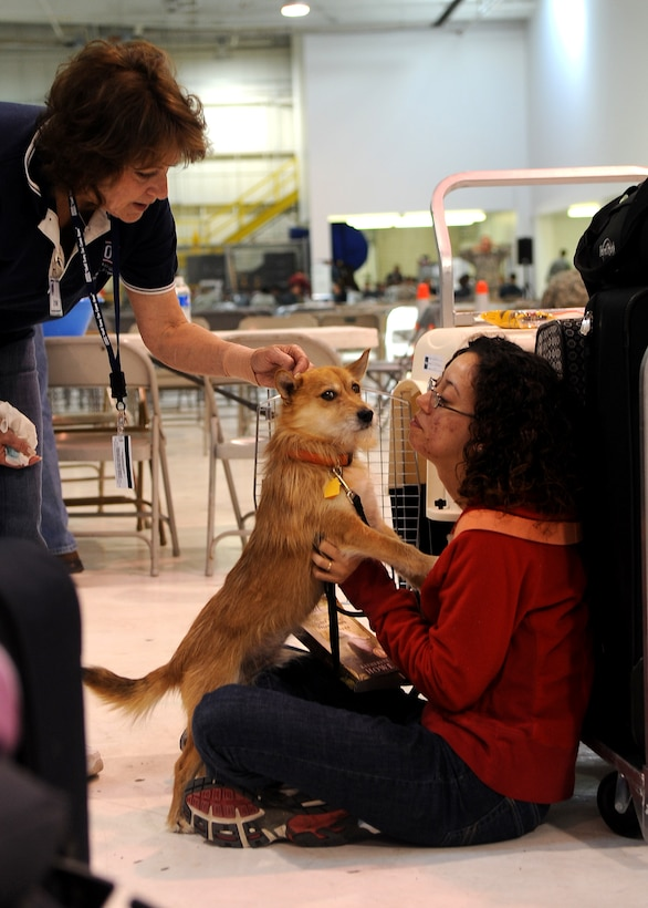 Buckley Air Force Base, Colo- Jacquelyn Cowgill and her K9 companion, Todd, arrive at Denver International Airport from Misawa Air Force Base March 25, 2011. Operation Pacific Passage has allowed military dependent evacuee's and their pets to come home to the United States after the devastating earthquake and tsunami struck Japan March 11, 2011.  (U.S. Air Force photo by Airman 1st Class Marcy Glass)