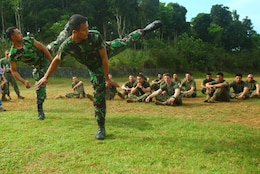 Indonesian Marines from 6th Battalion, 2nd Brigade, Korps Marinir, demonstrate kicks to U.S. Marines and Sailors with Landing Force Company during martial arts training May 27. Landing Force Company, comprised primarily of Marines from 2nd Battalion, 23rd Marine Regiment and 4th Assault Amphibian Battalion, 4th Marine Division, is participating in Cooperation Afloat Readiness and Training (CARAT) 2011. CARAT is an annual series of bilateral exercises held between the U.S. and Southeast Asian nations with the goals of enhancing regional cooperation, promoting mutual trust and understanding, and increasing operational readiness.  While in Indonesia, the service members from both nations will train together on martial arts, military operations on urban terrain, jungle warfare, combat marksmanship and combat lifesaving. (U.S. Marine Corps Photo by Cpl. Aaron Hostutler)
