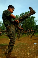 Lance Cpl. Andy Rivera, a rifleman with 2nd Platoon, Landing Force Company, performs a high kick after a demonstration by Indonesian Marines from 6th Battalion, 2nd Brigade, Korps Marinir, during martial arts training May 27. Landing Force Company, comprised primarily of Marines from 2nd Battalion, 23rd Marine Regiment and 4th Assault Amphibian Battalion, 4th Marine Division, is participating in Cooperation Afloat Readiness and Training (CARAT) 2011. CARAT is an annual series of bilateral exercises held between the U.S. and Southeast Asian nations with the goals of enhancing regional cooperation, promoting mutual trust and understanding, and increasing operational readiness.  While in Indonesia, the service members from both nations will train together on martial arts, military operations on urban terrain, jungle warfare, combat marksmanship and combat lifesaving. (U.S. Marine Corps Photo by Cpl. Aaron Hostutler)