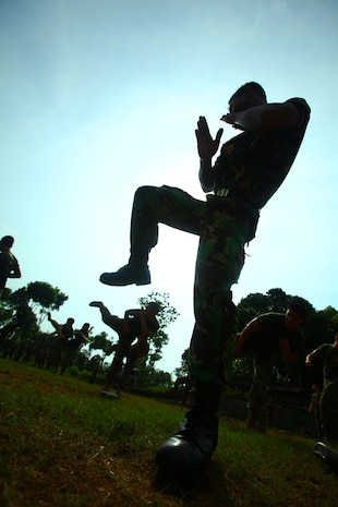 An Indonesian Marine from 6th Battalion, 2nd Brigade, Korps Marinir, performs a kick during martial arts training with U.S. Marines from Landing Force Company May 27. Landing Force Company, comprised primarily of Marines from 2nd Battalion, 23rd Marine Regiment and 4th Assault Amphibian Battalion, 4th Marine Division, is participating in Cooperation Afloat Readiness and Training (CARAT) 2011. CARAT is an annual series of bilateral exercises held between the U.S. and Southeast Asian nations with the goals of enhancing regional cooperation, promoting mutual trust and understanding, and increasing operational readiness.  While in Indonesia, the service members from both nations will train together on martial arts, military operations on urban terrain, jungle warfare, combat marksmanship and combat lifesaving. (U.S. Marine Corps Photo by Cpl. Aaron Hostutler)