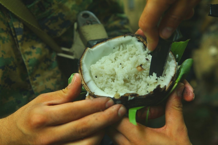 An Indonesian Marine demonstrates to U.S. Marines and Sailors with Landing Force Company how to cook rice in a coconut during jungle survival training May 28. The Marines and Sailors, primarily from 2nd Battalion, 23rd Marine Regiment, are participating in Cooperation Afloat Readiness and Training (CARAT) 2011 through June. CARAT is an annual bilateral exercise held between the U.S. and Southeast Asian nations with the goals of enhancing regional cooperation, promoting mutual trust and understanding and increasing operational readiness throughout the participating nations.  While in Indonesia, the service members from both nations trained in martial arts, military operations in urban terrain, jungle survival, combat marksmanship, sniper techniques and combat lifesaving skills.