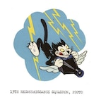 The 13th Reconnaissance Squadron is seeking to re-implement the squadron's original patch created by Walt Disney Studios in 1944. During World War II, a six-person team of animators at Walt Disney Productions created approximately 1,200 designs for both American and Allied military units.