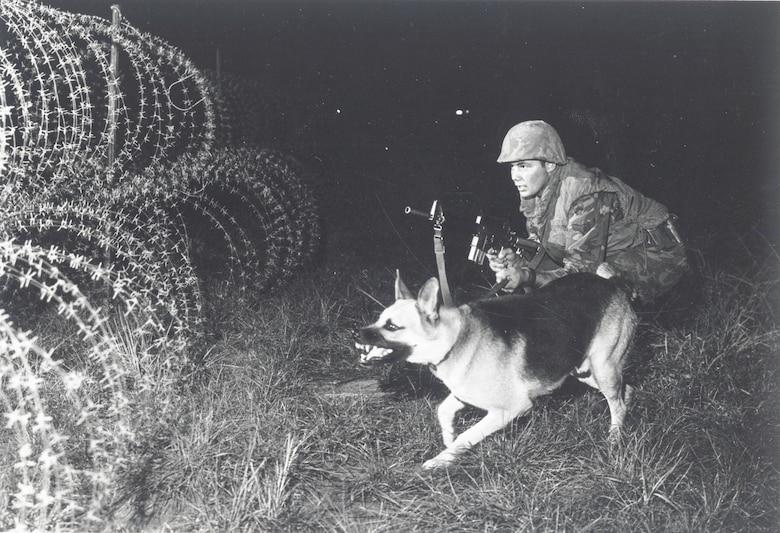 Sentry dog alerts to movement outside the perimeter of Phan Rang Air Base. (U.S. Air Force photo).