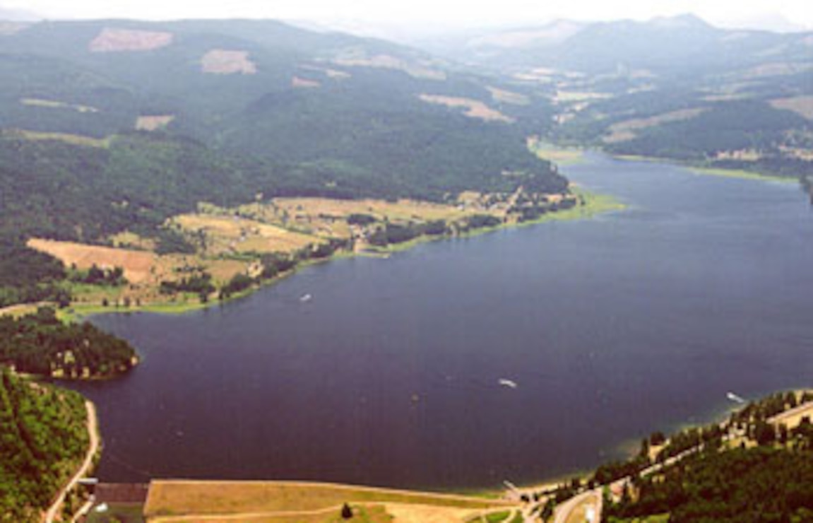 aerial photo of Cottage Grove Dam