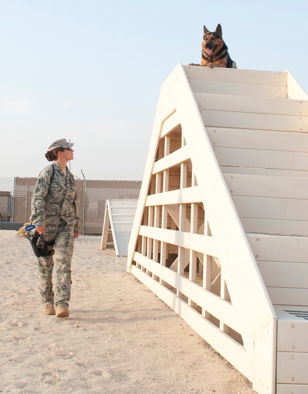 SOUTHWEST ASIA – Senior Airman Jamie Harkin, 386th Expeditionary Security Forces Squadron military working dog handler, guides her dog, Erdo, up the stairs through the obstacle course here July 20. (U.S. Air Force photo/Staff Sgt. Alexandra M. Boutte)