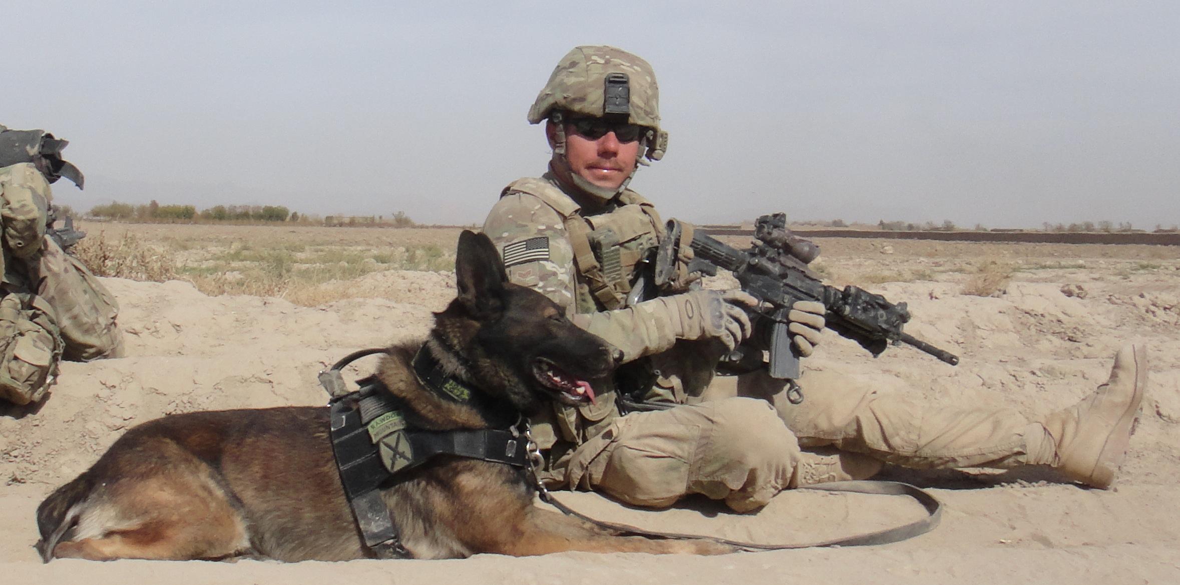 Military Dog Harness Uk