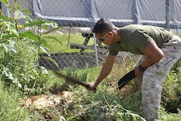 1st Lt. Phal C. It, executive officer of Bravo Company, cultivates the perimeter of the Camp Pendleton Animal Shelter, during a Single Marine Program volunteer event, Aug. 21.