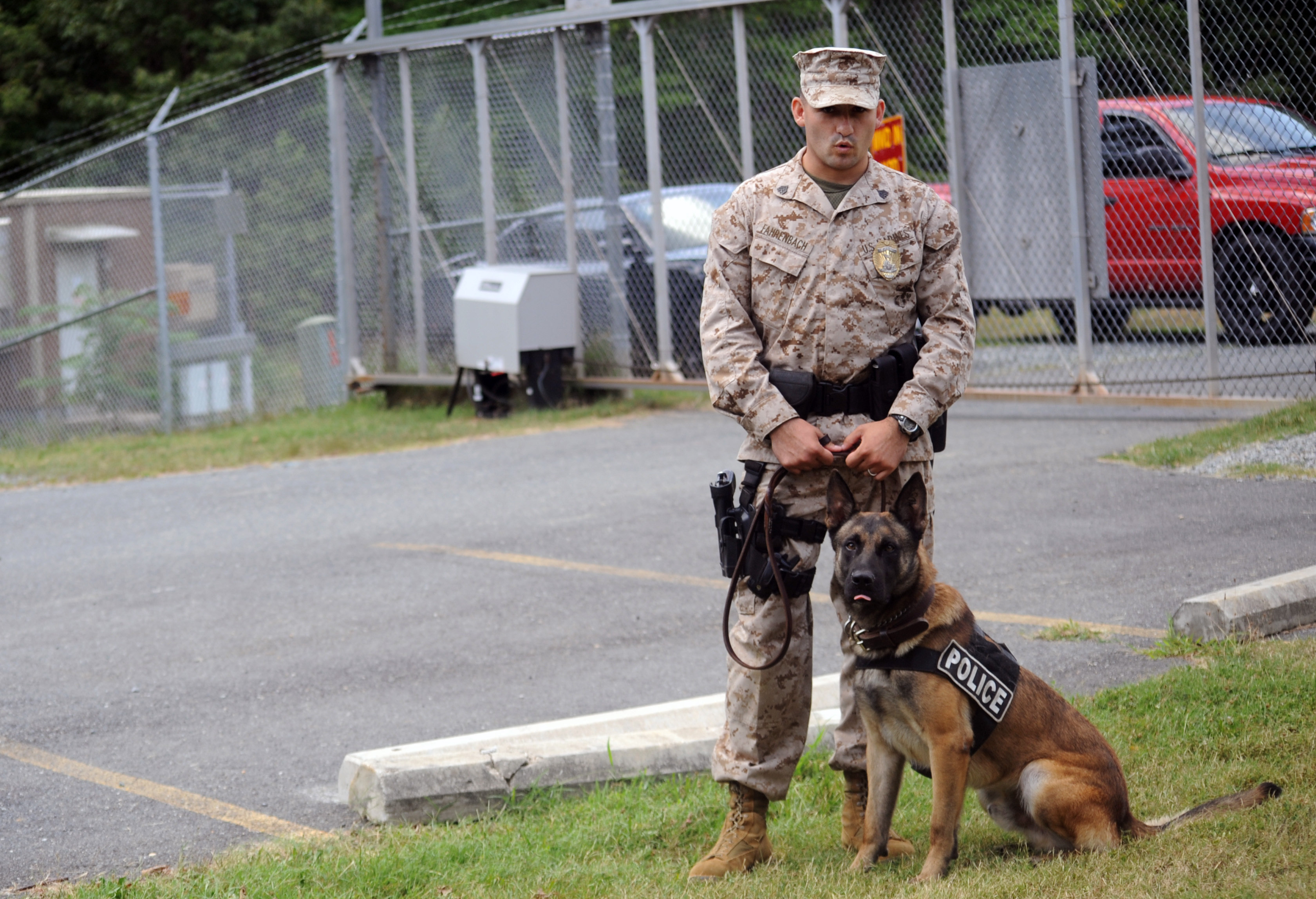 Four-legs makes the best partner, friend > Marine Corps Base ...