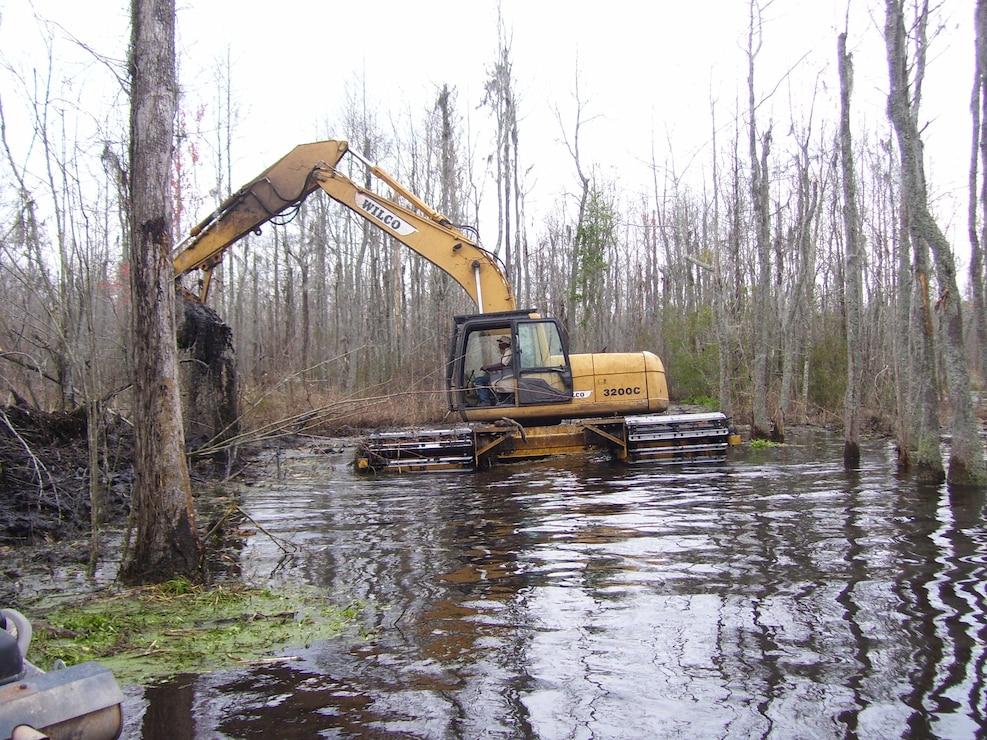 Pocotaligo Swamp