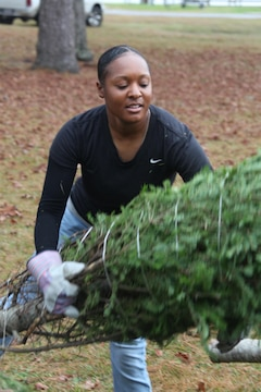 Lance Cpl. Nekia Taylor, a Marine Wing Communications Squadron 28 Marine, helps unload Christmas trees for the 2012 Trees for Troops event at Hancock Marina Dec. 10. There were more than 500 trees donated for the event.