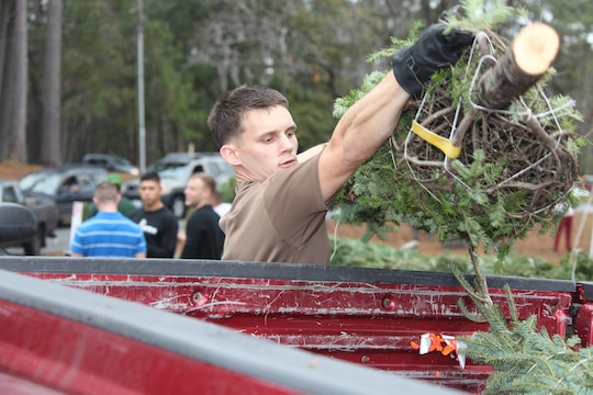 Lance Cpl. Dallin Brimley, a Marine Wing Communications Squadron 28 Marine, helps load a Christmas tree into the back of Marines truck during the 2012 Trees for Troops event at Hancock Marina Dec. 10. More than 20 Marines and civilians helped load up vehicles with free trees.