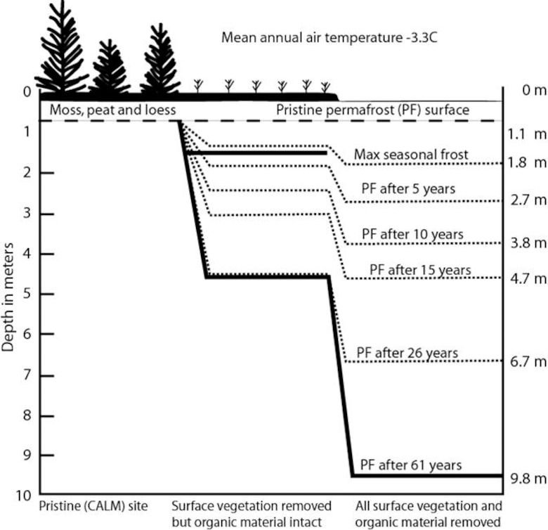 A graphic illustration of the Linell Plots at FPES and the effects of vegetation removal on permafrost.