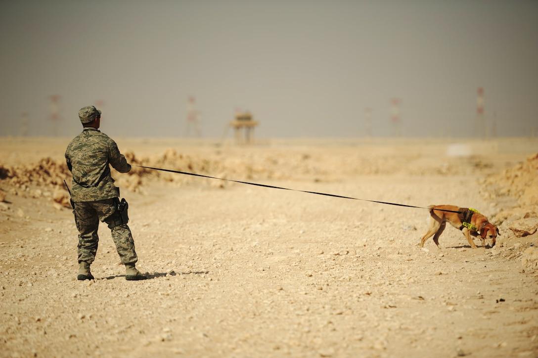 Photo courtesy 460th Security Forces K-9 unit