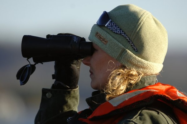 DALE HOLLOW LAKE — Susie Dixon of Livingston, Tenn., looks for the American Bald Eagle during an Eagle Watch Tour Jan. 28, 2012.