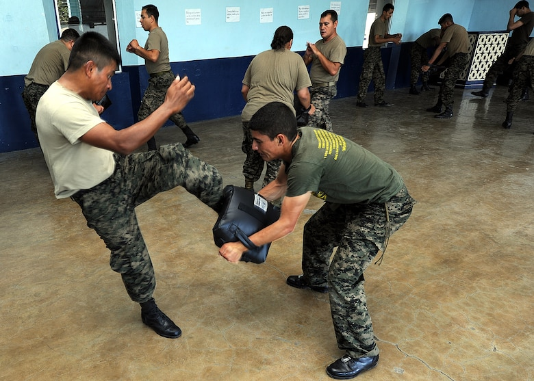 Senior Airmen Erick Nunez and Francisco Sanchez, Honduran Air Force security forces members, practice the front kick as part of the self-protection portion of the air base defense seminar Feb. 14, during the Air Mobility Command Building Partner Capacity mission in Tegucigalpa, Honduras.  (U.S. Air Force photo by Tech. Sgt. Lesley Waters)