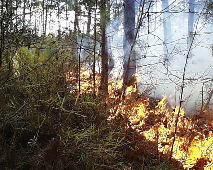 Prescribed fires, conducted by trained fire managers, accomplishes planned land management objectives. (courtesy photo)