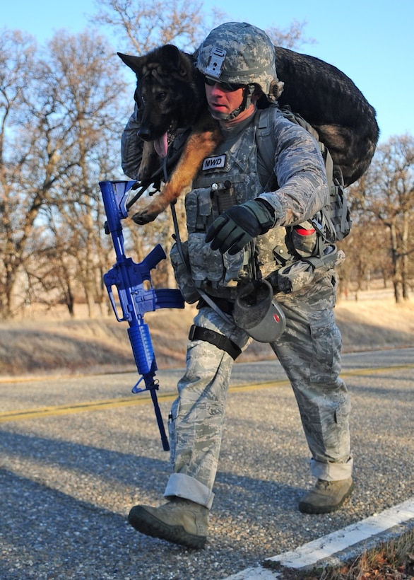 Staff Sgt. Bryan Bowermaster, 9th Security Forces Squadron military working dog handler, carries his dog Edy during a ruck march Jan. 9, 2012 behind the Beale AFB clinic. In the event of a stream crossing or an injury the dogs have to be used to this treatment and the Airman have to be able to perform the task comfortably. (U.S Air Force photo by Senior Airman Shawn Nickel/Released)