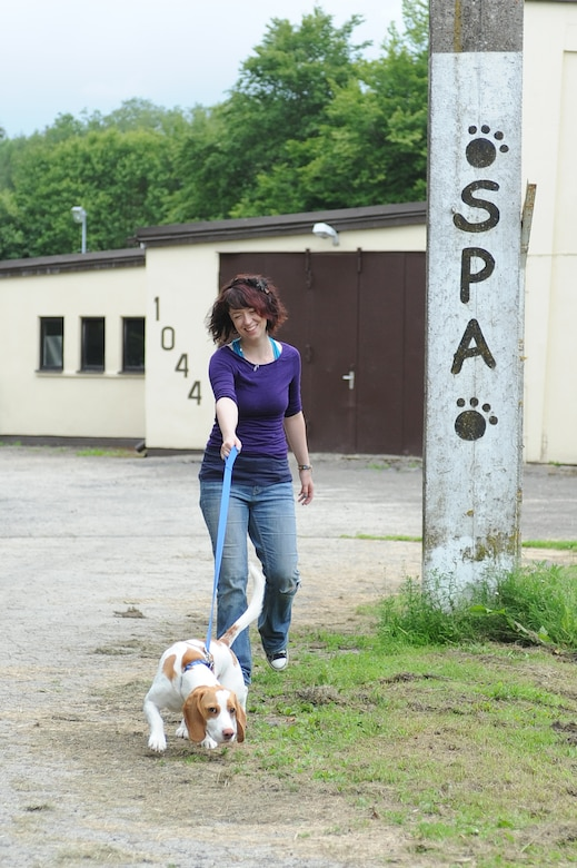 Oberweis, Germany -- Camille Henry, 52nd Force Support Squadron Pet Spa assistant manager, takes Buster, Beagle, for a walk June 28 at the pet spa here. Animal caretakers take dogs for walks twice a day. More walks can be added-on for additional fees. The pet spa has 31 dog and five cat indoor kennels, and they can also house exotic animals for base members. (U.S. Air Force photo by Senior Airman Natasha Stannard/ Released)