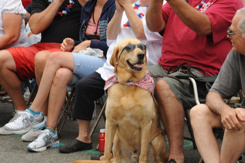 A dog shows his patriotic spirit during the Huntington Beach 4th of July parade. Lieutenant Gen. Ellen Pawlikowski, SMC commander, was the parade's military grand marshal. (Photo by Sarah Corrice)