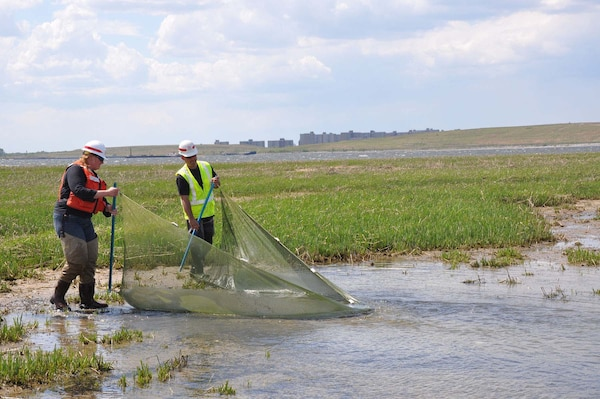 The Army Corps of Engineers continues to restore marsh islands in Jamaica Bay as part of its environmental restoration principles