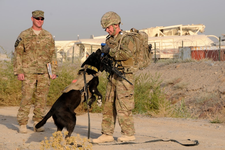 U.S. Air Force Staff Sgt. Larry Harris, a Military Working Dog handler, rewards his dog, Aaron, for finding simulated explosives buried along a road at Kandahar Airfield, Afghanistan on July 9, 2012 during a training exercise while U.S. Army Staff Sgt. Joshua Parker looks on. The handlers and their dogs rotate through Kandahar Airfield for validation prior to moving out to Forward Operating Bases around the country where they will lead combat foot patrols and sniff out IEDs and other explosives. (U.S. Air Force photo/TSgt. Stephen Hudson)