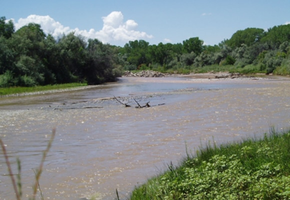 The Rio Grande as it flows through the Española Valley project area.